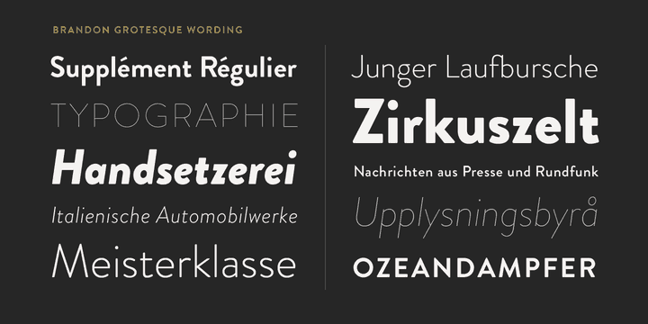 Download Brandon Grotesque font (typeface)