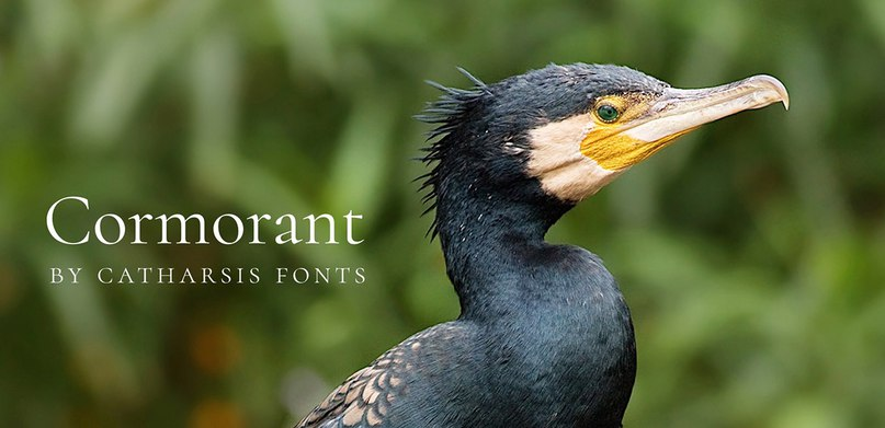 Download Cormorant OTF Font Family font (typeface)