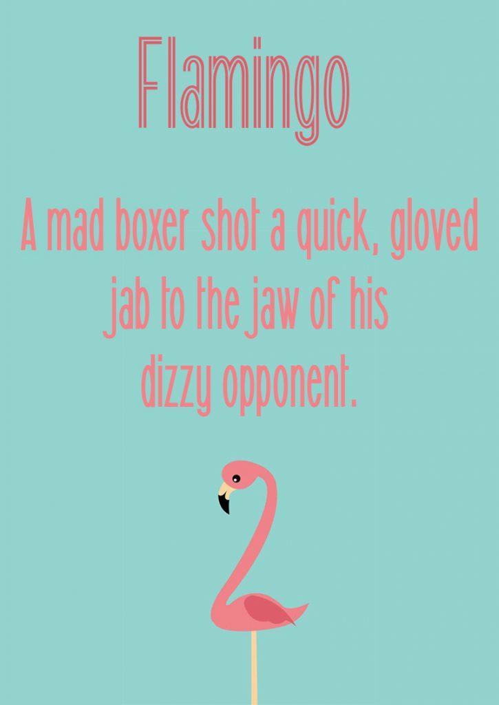 Download Flamingo font (typeface)
