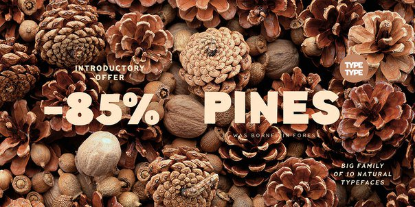 Download tt pines (bold italic) font (typeface)