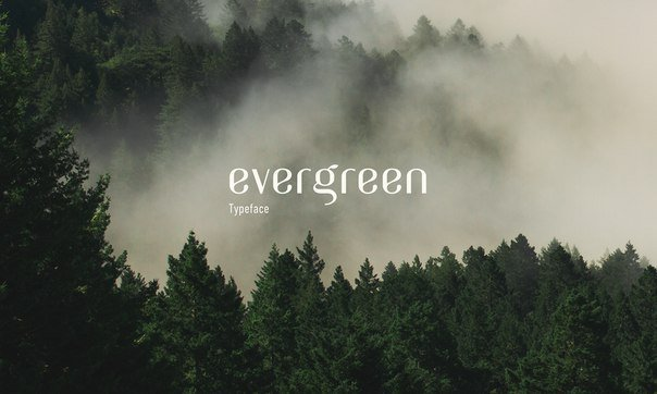 Download Evergreen font (typeface)