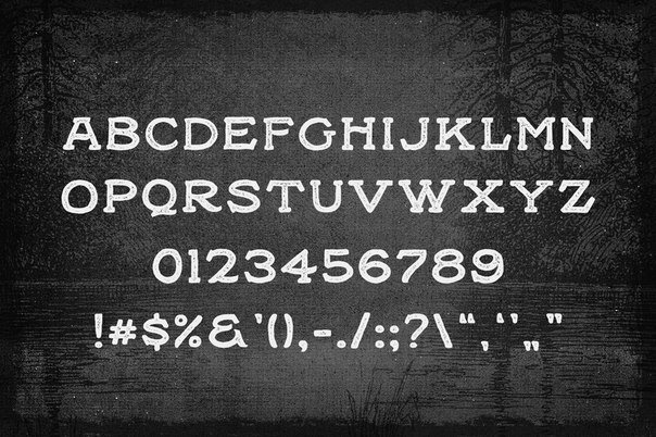 Download Black Willow font (typeface)