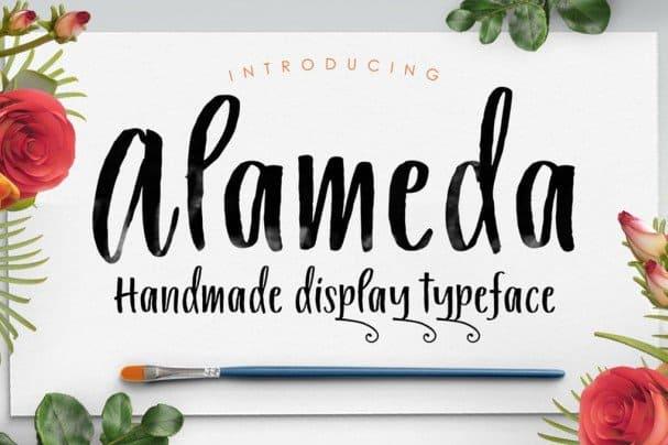 Download Alameda Typeface font (typeface)