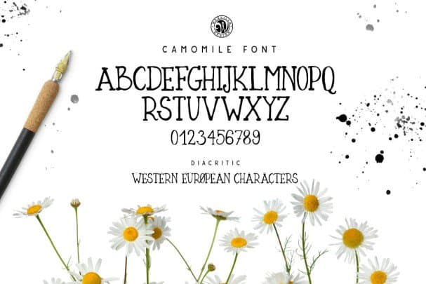Download Camomile font (typeface)