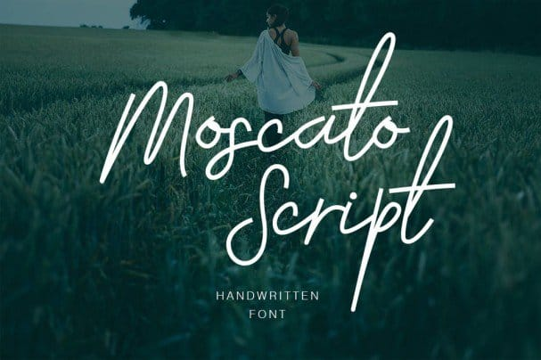 Download Moscato Script font (typeface)