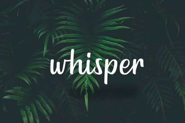 Download Goldiana - Font Script font (typeface)