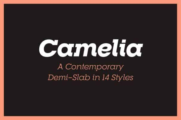 Download RNS Camelia font (typeface)