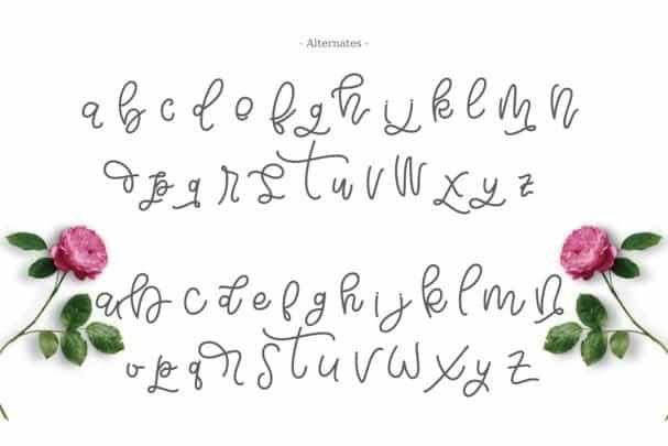 Download Bellinda Script Typeface font (typeface)