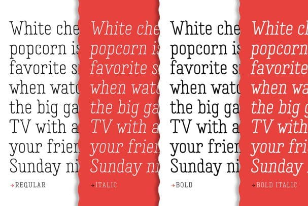 Download Garlic Salt Font Family font (typeface)