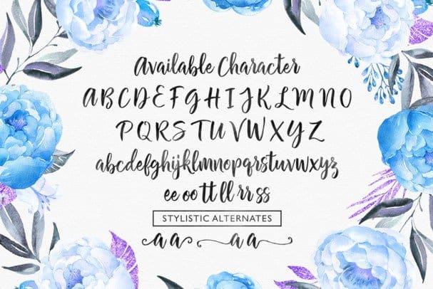 Download Chamelia Script font (typeface)