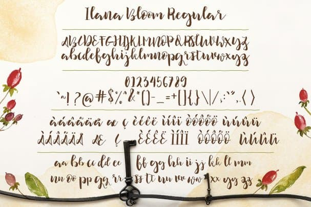 Download Ilana Bloom font (typeface)