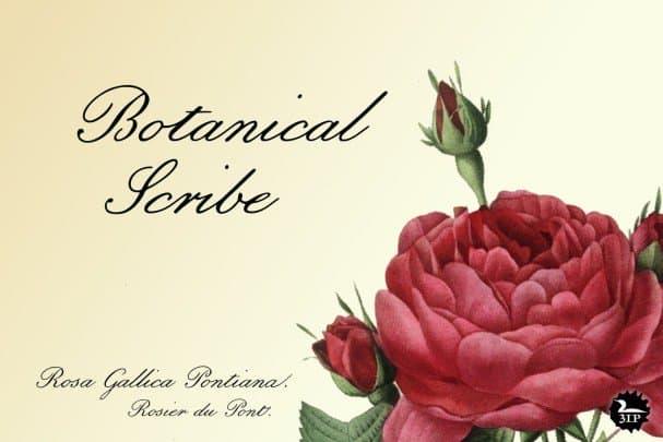 Download Botanical Scribe font (typeface)