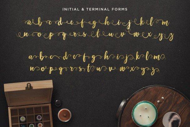 Maloishe Brush Script Font font free download