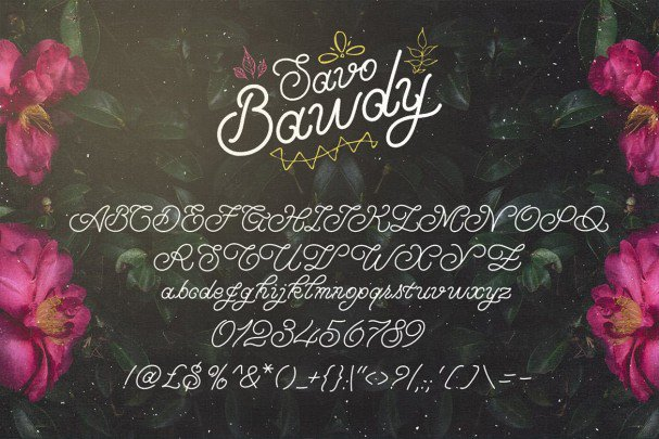 Download Savo Bawdy - Cursive Typeface font (typeface)