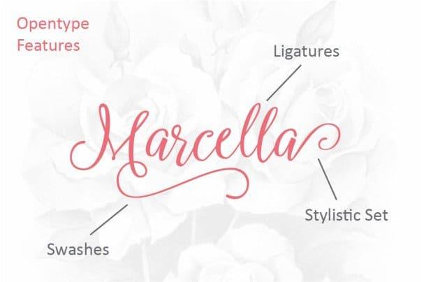 Download Marcella Script font (typeface)