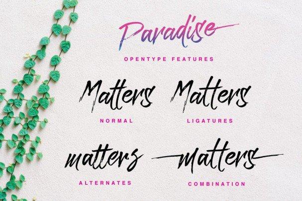 Download Paradise Typeface font (typeface)
