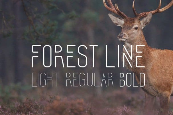 Download Forest Line Condensed font (typeface)