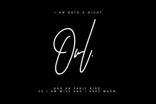 Download Astronout Signature Typeface font (typeface)