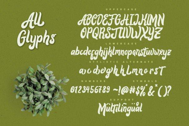 Download Alora typeface font (typeface)