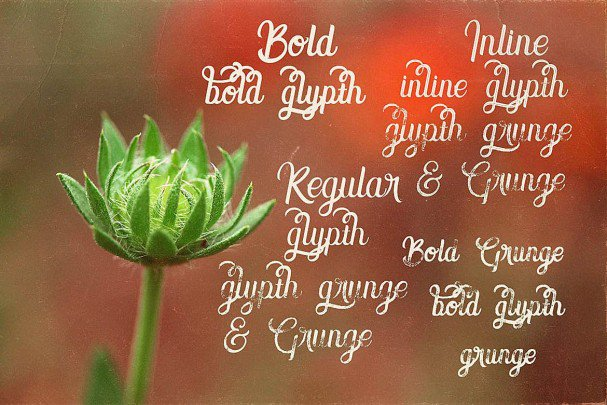 Download Amora Script font (typeface)