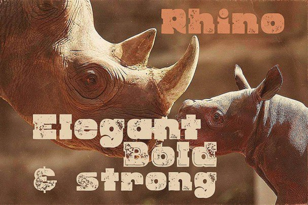 Download Rhino - Display Font font (typeface)