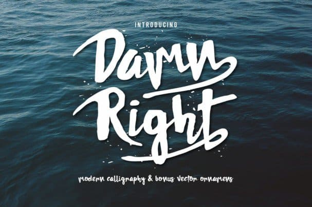 Download Damnright Typeface font (typeface)