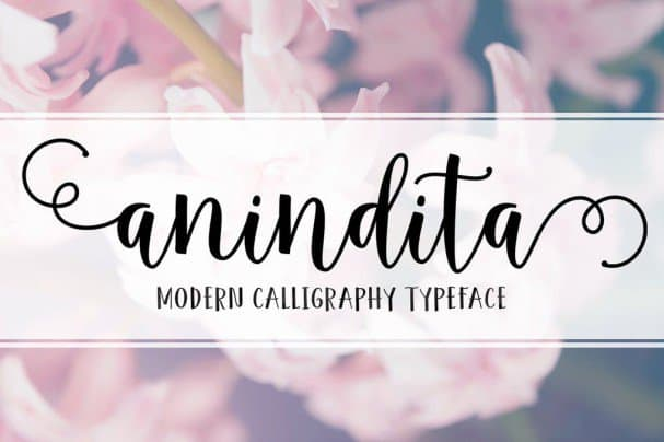 Download Anindita Script font (typeface)