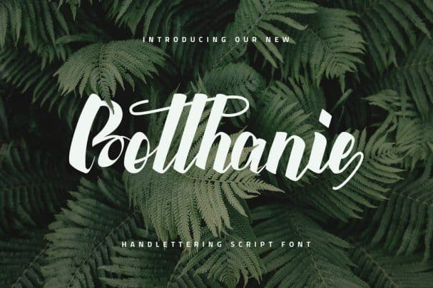 Download Botthanie font (typeface)