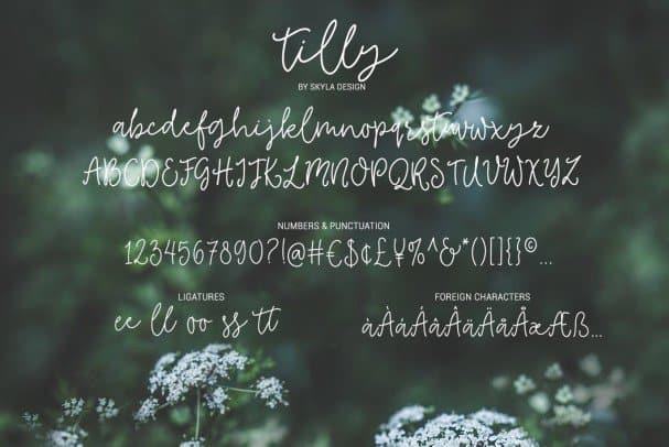 Download Tilly, a lovely font & bonus clipart font (typeface)