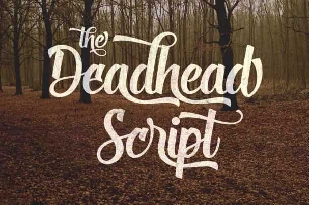 Download Deadhead Script font (typeface)