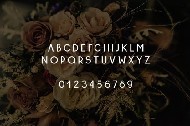 Download Friday's Font font (typeface)