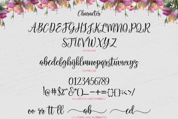 Download Salbatora Script font (typeface)