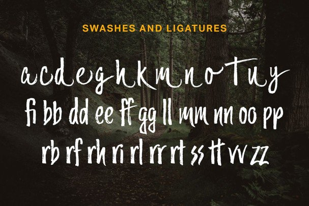 Download Trailmade Family font (typeface)
