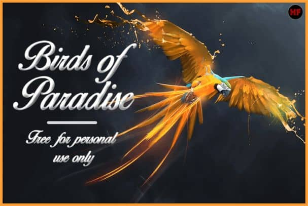 Download Birds of Paradise font (typeface)