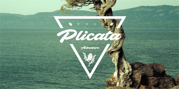 Download plicata font (typeface)