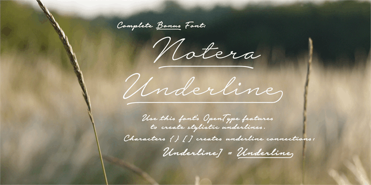 Download Notera 2 font (typeface)
