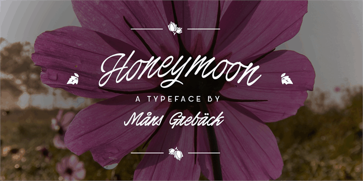 Download Honeymoon font (typeface)