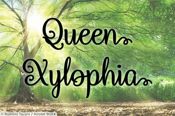 Download Queen Xylophia font (typeface)