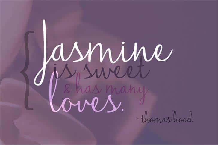 Download Jasmine Reminiscentse font (typeface)