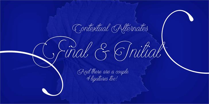 Download Encina Script 1 font (typeface)