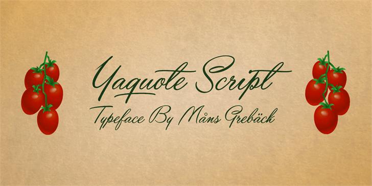 Download Yaquote Script font (typeface)